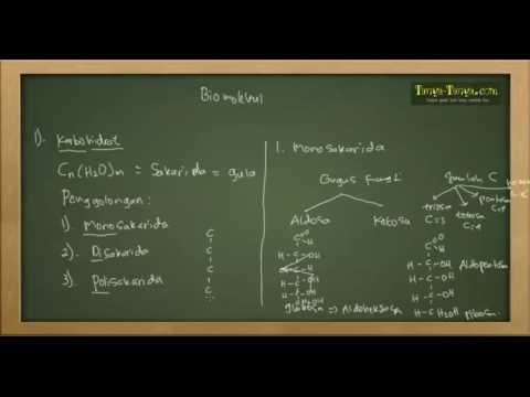Belajar Kimia : Karbohidrat, Protein, Lipid Bagian 1